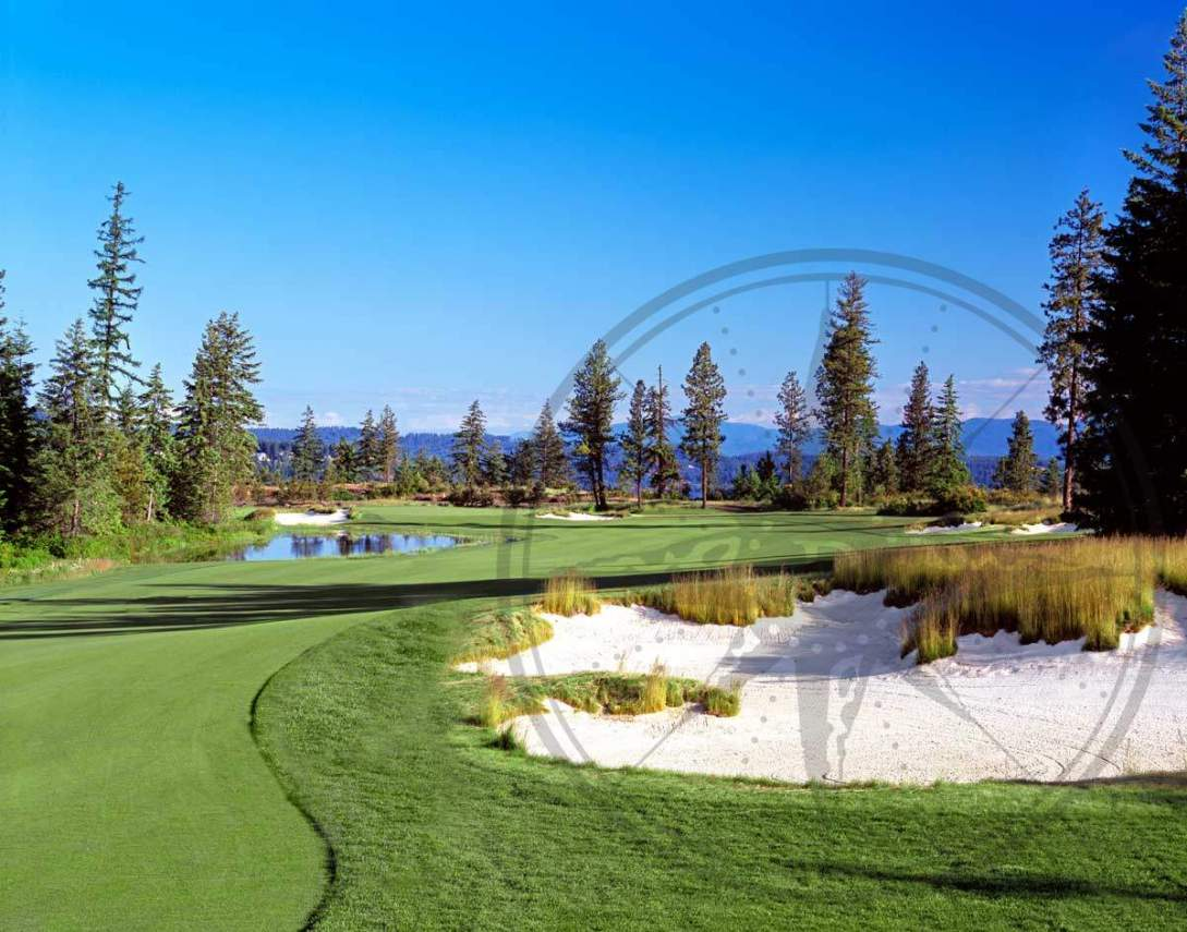 photobook-golf-5_1200_942_65_rmimgwatermark.png_0_0_20_r_b_-10_-10